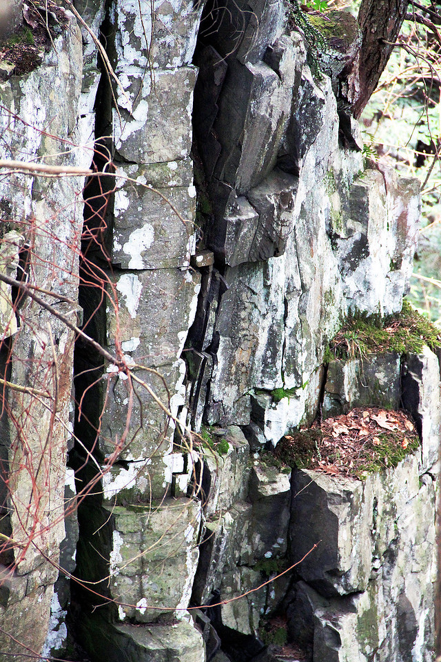 Chesterfield Gorge, Chesterfield, Mass.