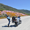 Pacific Valley, PCH south of Big Sur - May 2014