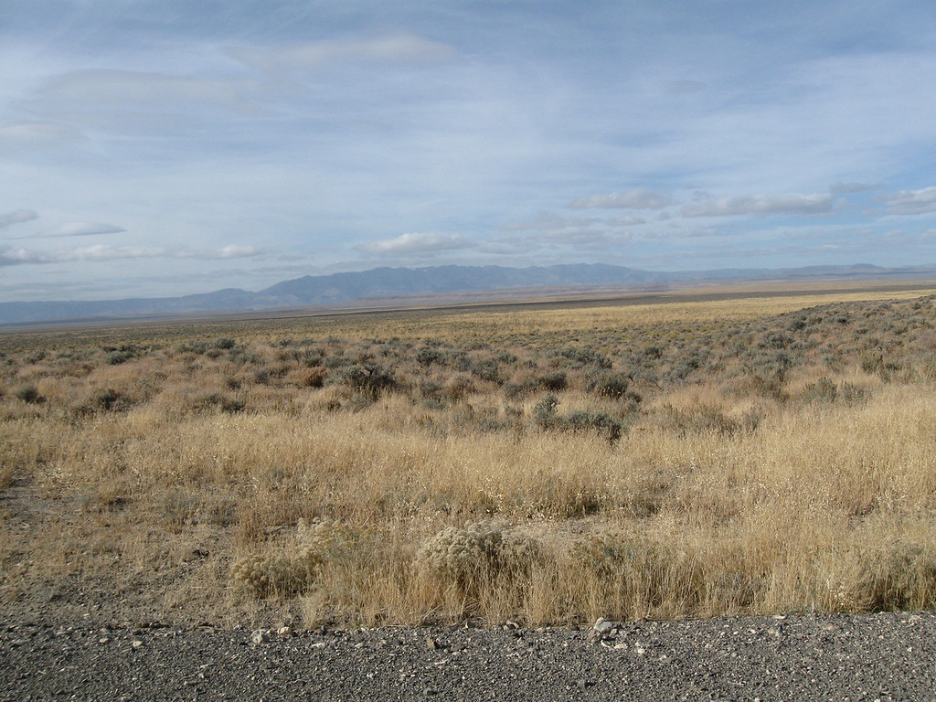Looking W-NW toward Steens Mtns from Whitehorse Ranch Rd.