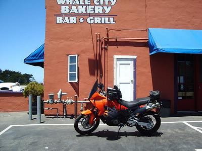 Santa Cruz Mountains, June 24, 2007