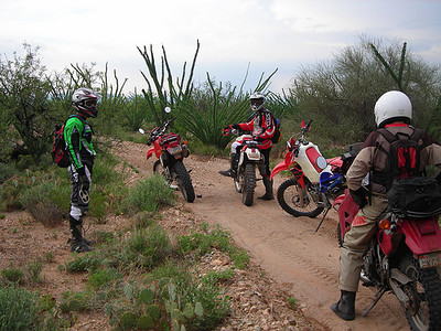 During the descent from Gunsight Pass the glue that held my instrument cluster together over the past year let go. I had to take it easy in the rough stuff after that. Jim was taking it easy on the descent also after discovering the lack of grip of his rear tire. Craig and Troy got quite a bit ahead of us. We came upon this Ocatillo forest when we got off the mountain. These Ocatillos were bushier than any I had seen.