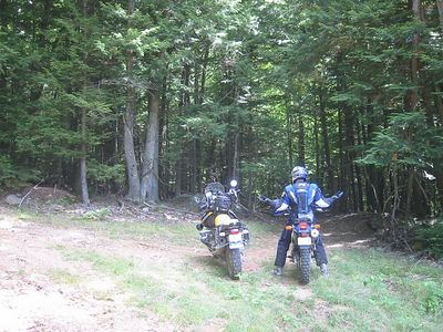 Wade State Forest.  Start of the trail.  Two ways to go...we went to the right.