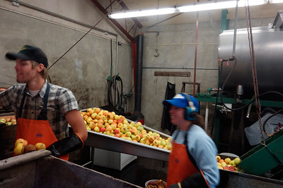 It's harvest and processing time.  The family still does all the work.