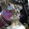 Scott Squirrel Radiator cap