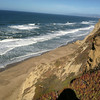I motored around in the forest down to La Honda and out to San Gregorio on the coast and took Cal 1 down to Monterey.