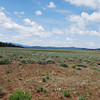 I rode up around Honey Lake and took these two pics of this meadow at almost 7000 feet. Jamesville Grade road.
