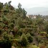 Los famosos andenes, de antepasados, todavia sirve de sistema de agricultura en muchos lugares como en Arequipa.