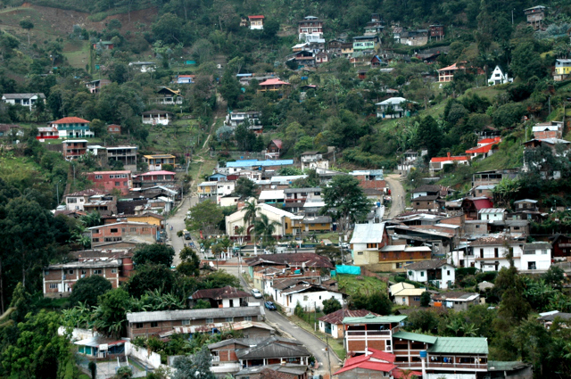 Felidia, Colombia