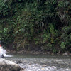 River crossing, Amazon rain forest, Ron's photo