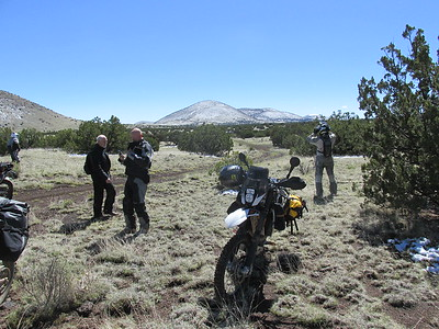 Day 4 AZBDR north of Flagstaff
