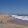 Chincoteague NWR. Just south of Assateague, it's on the same island, and is famous for ponies