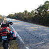 This swamp road has gentle curves and appealing straightaways. I spent the night in Washington, NC. The Tiger was running very well, a low prowling growl below 3000 rpm, a purring snarl in the midrange, and a rising howl above 6000. The same couldn't be said of my new Shoei TZ-R helmet. It's too light for this kind of long distance touring. There's no cold protection, and it's noisy. I hadn't used the Beadrider beaded seat cover--or rather, I started out with it but then quickly removed it, because in cold weather it makes you really cold in intimate places that you'd prefer were cozy. Pre-ride adjustments to the suspension  had the ride exactly right