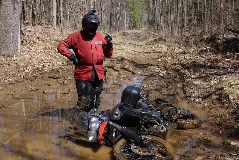 Tigger falls down in the mud.