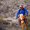 Bob in the Mojave