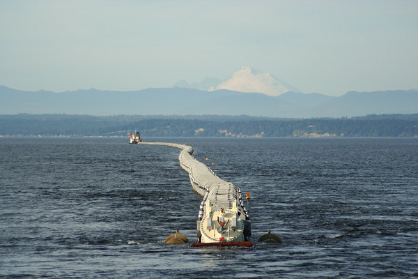 One mile long pipe we towed from Everett to Point Wells for runoff.