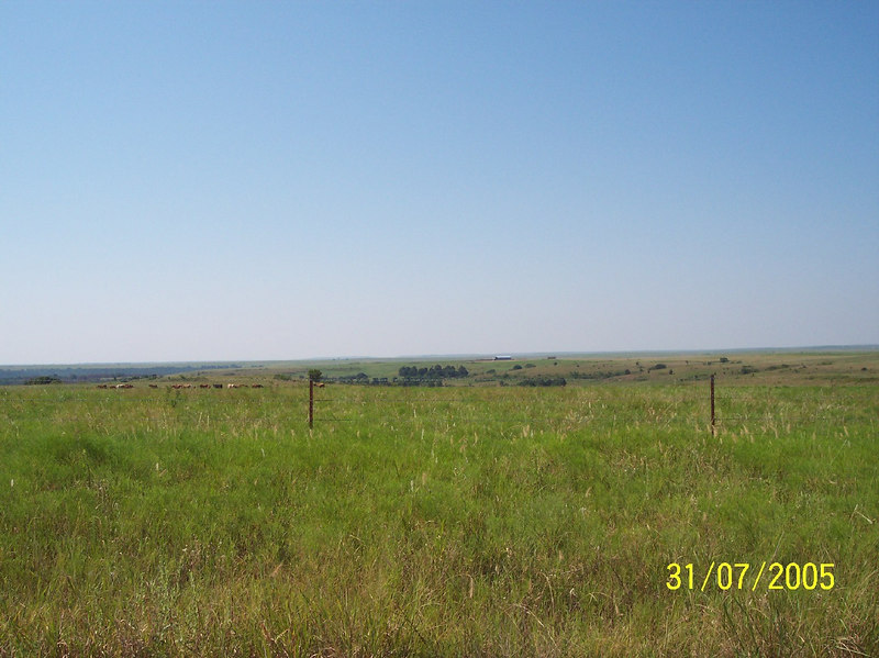 Hot and flat....good for describing the grasslands of OK, possibly not something you would hear someone say about a playboy model.