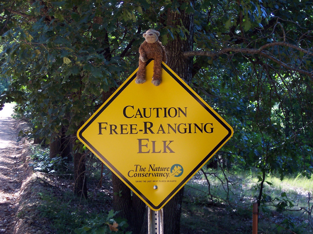 We just dont have signs like this in Vermont.....or Elk, or what I would call free range.   We have woods of course.