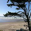 Kalacoch Beach WA