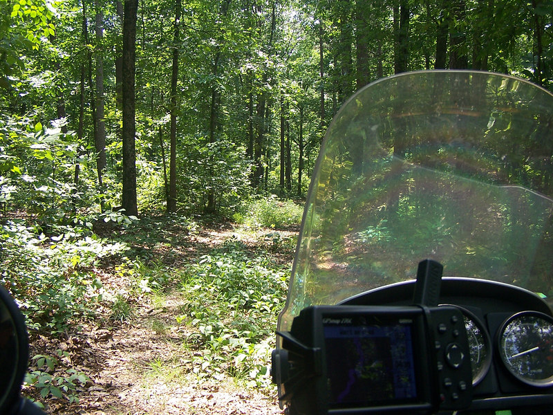 We took a few pics as we navigated through the woods. The Garmin shows us we are still on track.