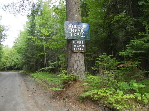 Hungry Bear Trail