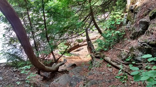 Path to the bottom of Partridge Falls