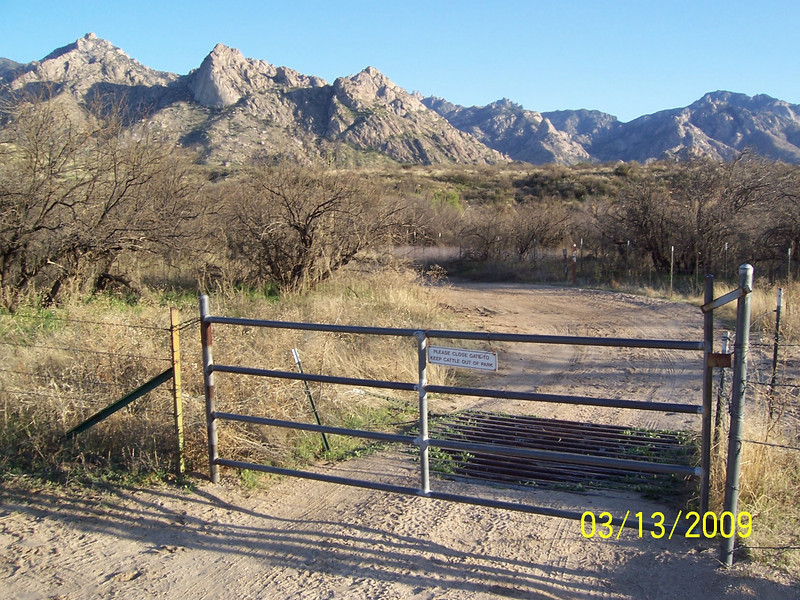 Head down Golder Ranch road in Catalina and then bear right after the cattle guard. Going through this gate starts you on the trail.