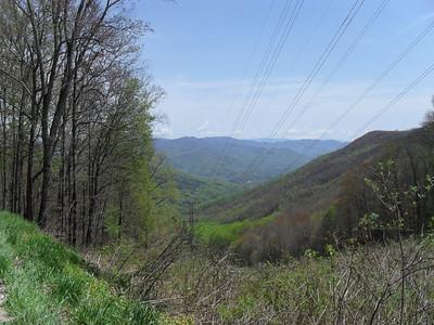 Tellico Gap NC 4-21-11