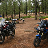 Bryce Canyon campsite