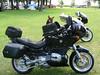 Mac & Arlene's Bike/Dogs