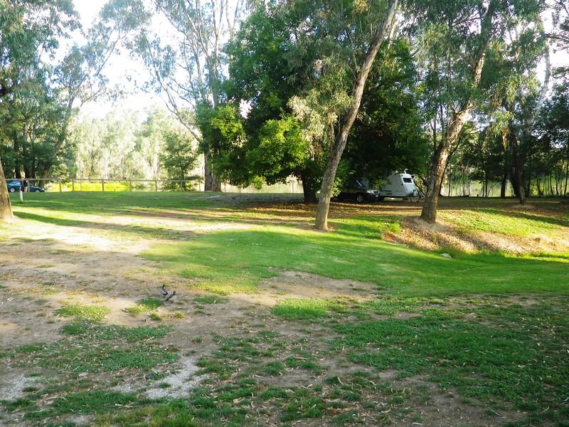 Goulburne River Tourist Park