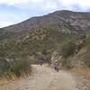 The Backside of Mt Lemmon