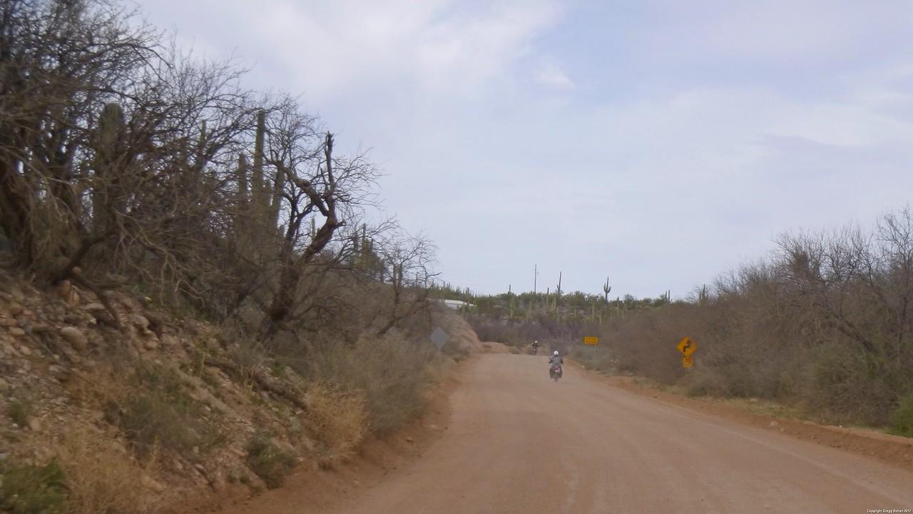2017-03-04 TLR Mt Lemmon Ride 026