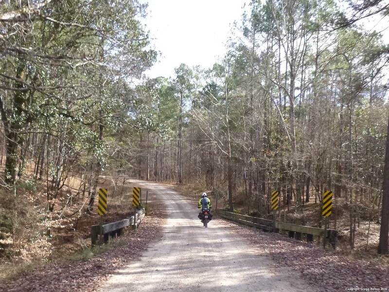 Got Many miles of dirt in the Kisatchie National forest near Alexandria, LA