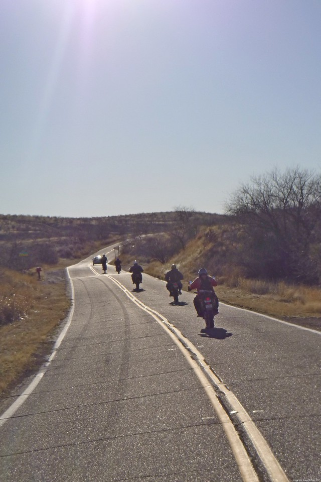 Some of the boys on West Arivaca Road - It's a beautiful thing to watch