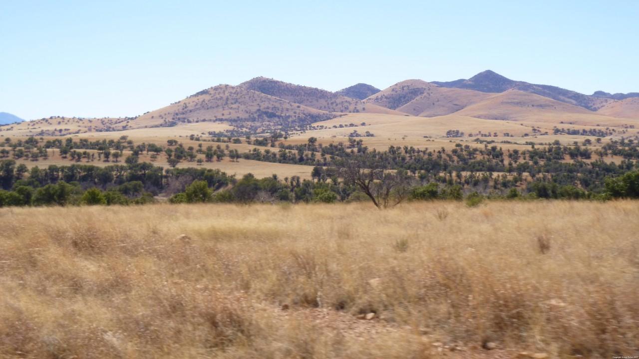 Duquesne Rd, Patagonia, AZ