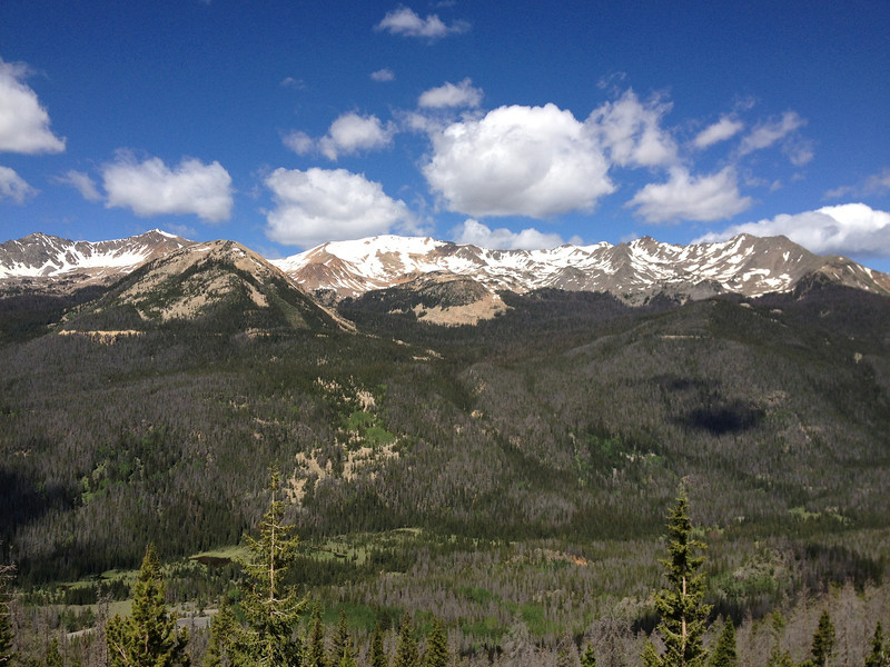 6/25 - Rocky Mountain National Park, Trail Ridge Road. I think this is Specimen Mountain.