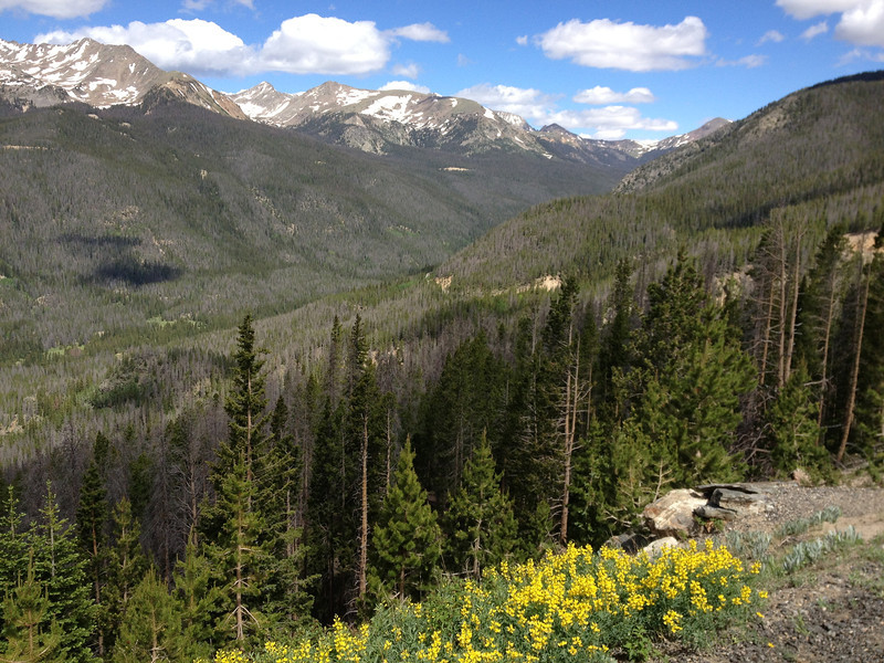 6/25 - Rocky Mountain National Park, Trail Ridge Road. Looking north up the valley.