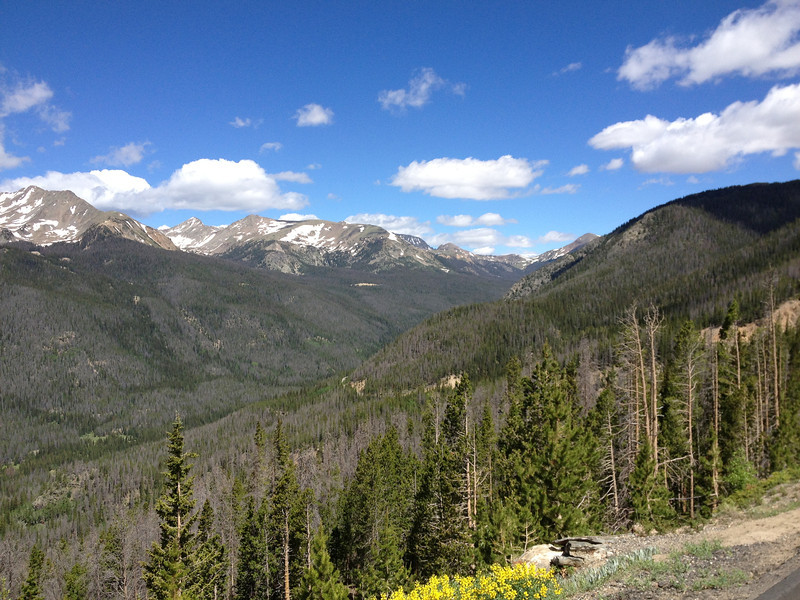 6/25 - Rocky Mountain National Park, Trail Ridge Road.