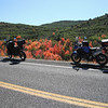 Whip's KTM and my Super Tenere.  9/23/2011  Red is maple.  Torrey, Utah.