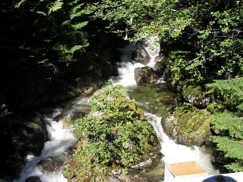Western Cascade stream along the Old Cascade Highway