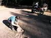 A roadside repair was in order.