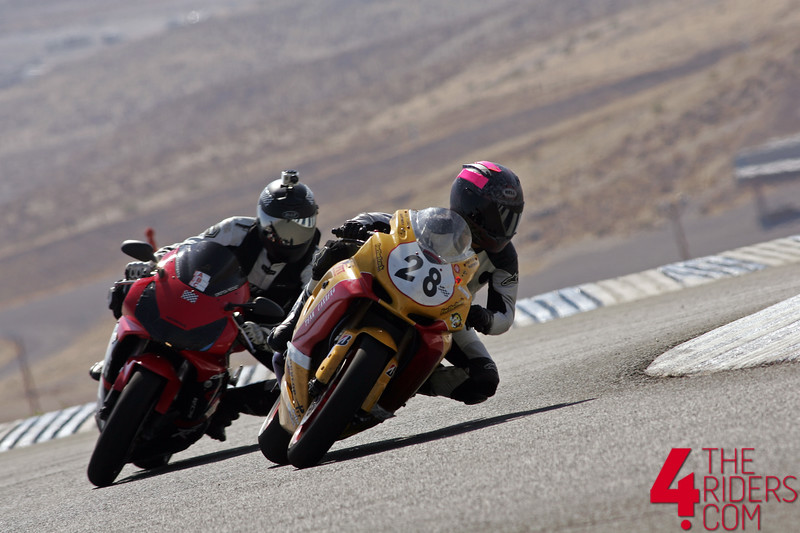 kevin and kinsy gsxr cbr 954 track rfr