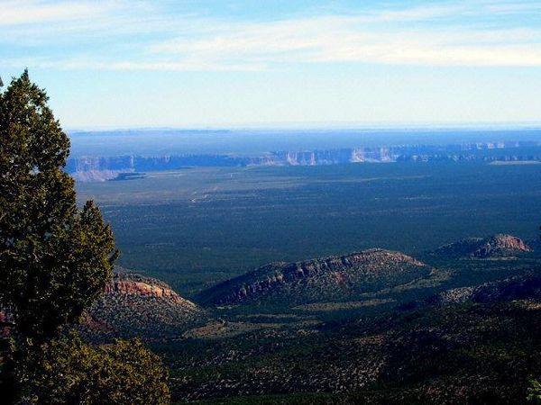 East Rim view, Kaibab Plateau