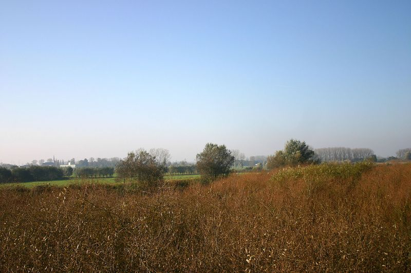 Trip langs Durme en Schelde (16/10/2005)
