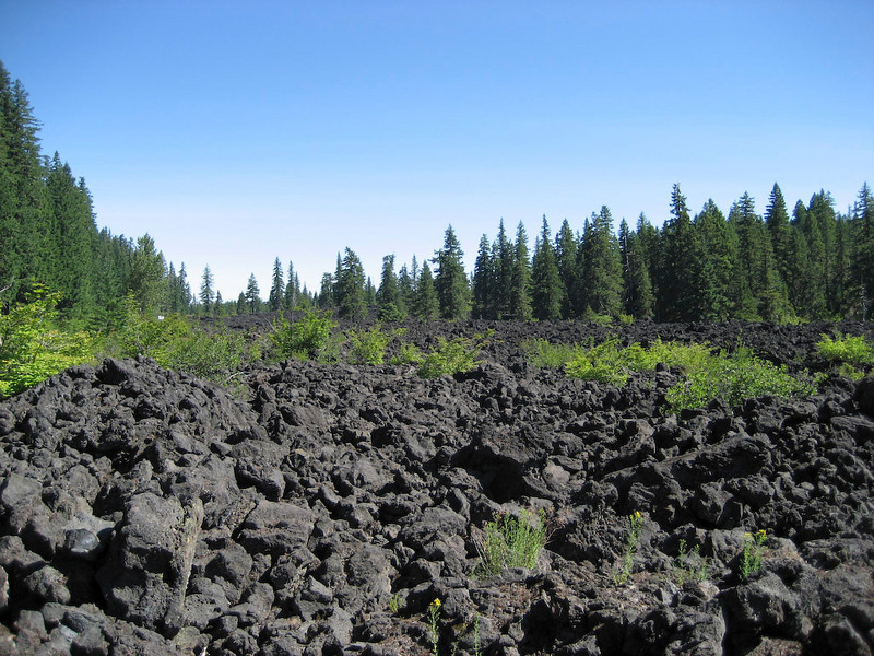 Lava field along SR-126 south of US-20.