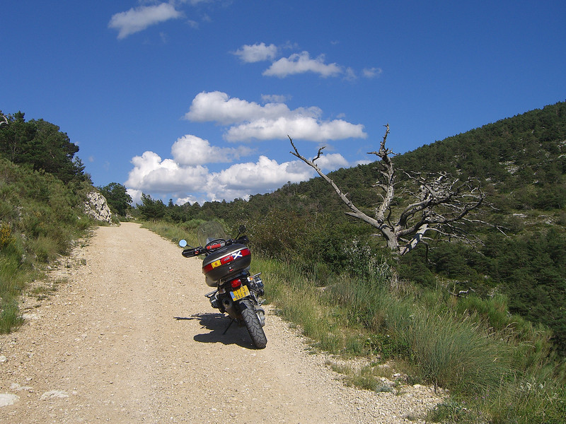 The forest track up to the top of Mt Lachens, highest point in the Var at 1715metres