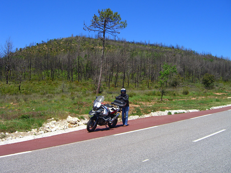 RD from Callas to Le Muy with burnt forest in the background.