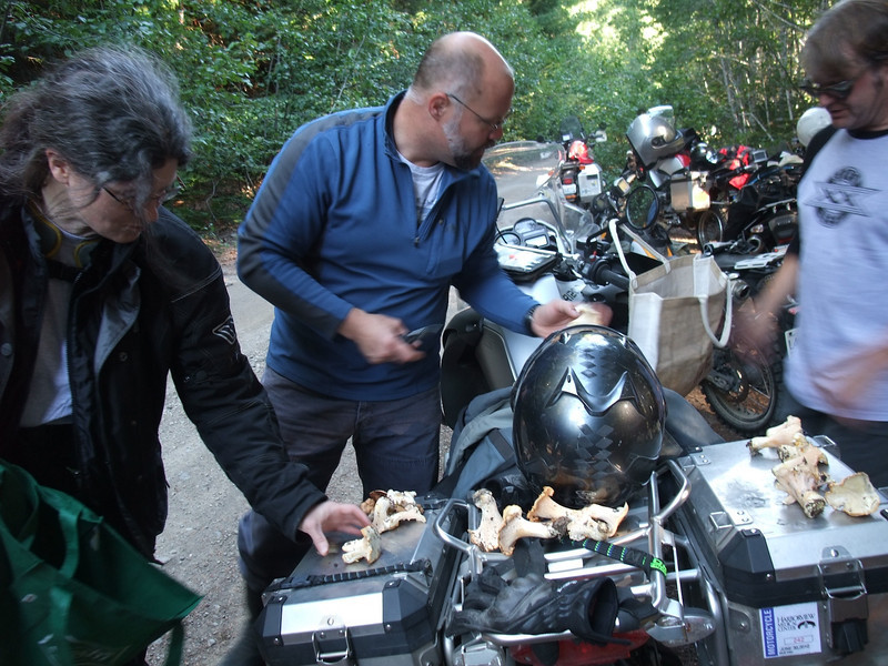 Eva, Wayne and Eric look over the haul.