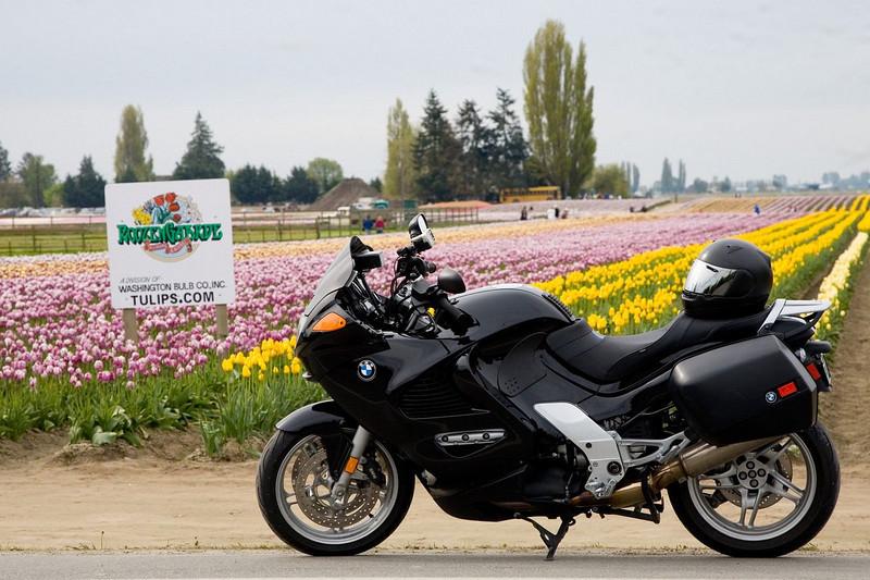 Tulip Ride