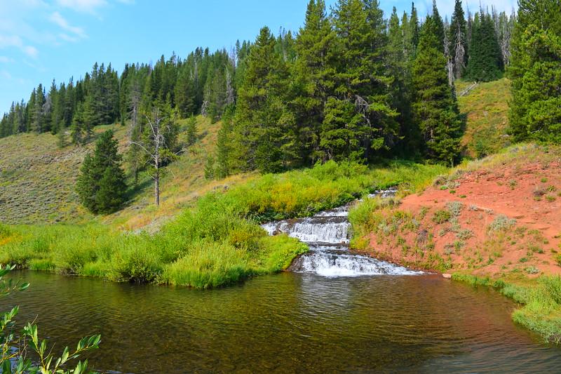 West Fork Ham's  Fork River, WY